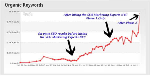 SEO Marketing Services Results by the SEO Marketing Experts NYC